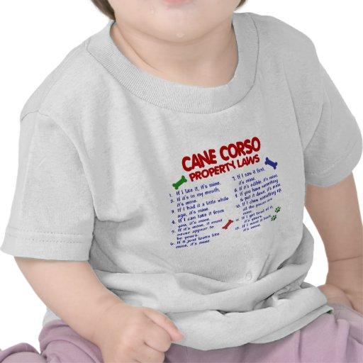 CANE CORSO Property Laws 2 Tee Shirts