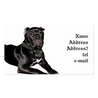 Cane corso puppy business card