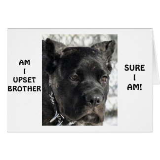 CANE CORSO SAYS BROTHER LOOKS YOUNG ON BIRTHDAY GREETING CARD