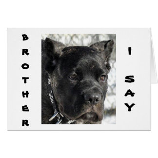 CANE CORSO WANTS TO CELEBRATE BROTHER'S BIRTHDAY GREETING CARD