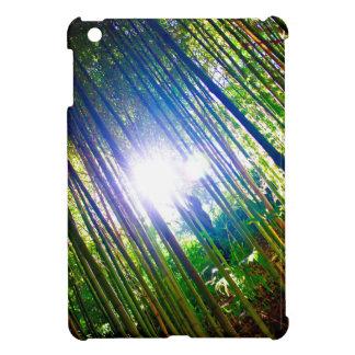 Cane Patch with Sunshine iPad Mini Covers
