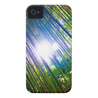 Cane Patch with Sunshine iPhone 4 Case-Mate Case