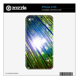 Cane Patch with Sunshine iPhone 4 Skin