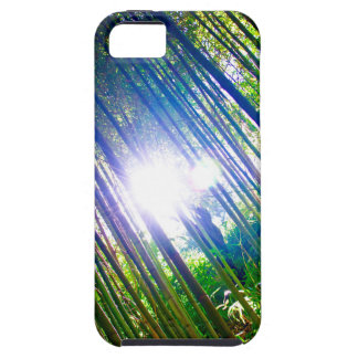 Cane Patch with Sunshine iPhone SE/5/5s Case