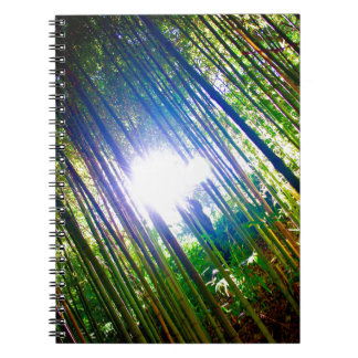 Cane Patch with Sunshine Spiral Notebook
