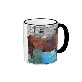 canela la llama en taza del cubo de agua
