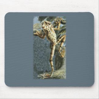 Canelos Treefrog Mouse Pad