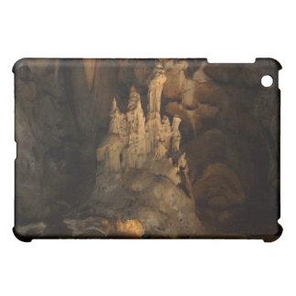 Cango Caves S. Africa iPad Case