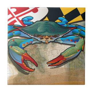 Cangrejo azul de Maryland Azulejo Cuadrado Pequeño
