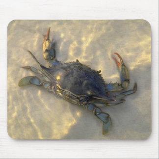 Cangrejo azul tapetes de raton