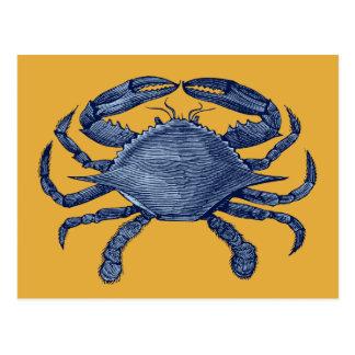 Cangrejo azul tarjetas postales