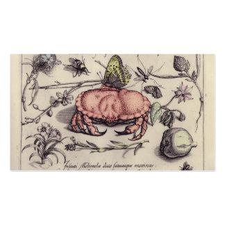 Cangrejo, Botanicals, insectos, y flores del Tarjetas De Visita