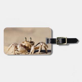 Cangrejo común del fantasma (Ocypode Cordimana) Etiquetas Para Equipaje