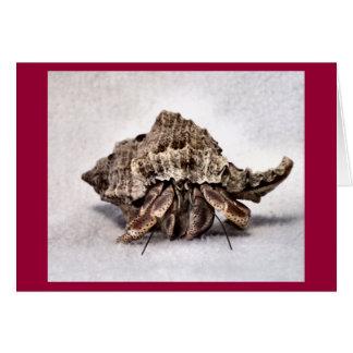 Cangrejo de ermitaño #1 tarjeta de felicitación