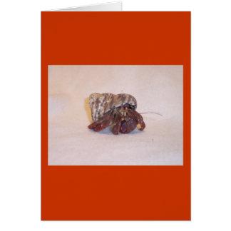 Cangrejo de ermitaño #6 tarjeta de felicitación