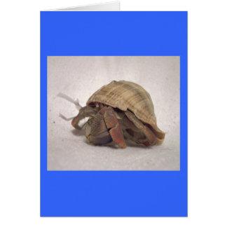 Cangrejo de ermitaño #8 tarjeta de felicitación