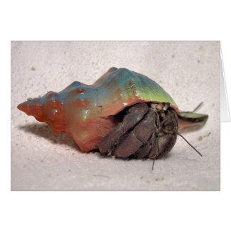 Cangrejo de ermitaño #9 tarjeta de felicitación