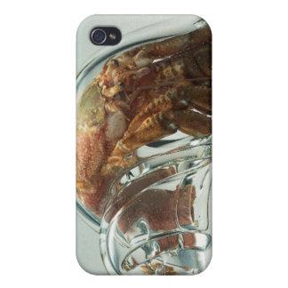 Cangrejo de ermitaño de cristal de Shell iPhone 4/4S Carcasa