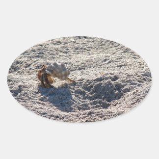 Cangrejo de ermitaño del fugitivo pegatina ovalada