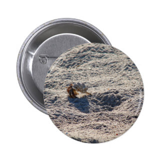 Cangrejo de ermitaño del fugitivo pin