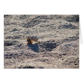 Cangrejo de ermitaño del fugitivo tarjeta de felicitación