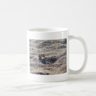 Cangrejo de ermitaño del fugitivo taza de café