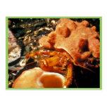 Cangrejo de ermitaño en esponja del cangrejo de er postal