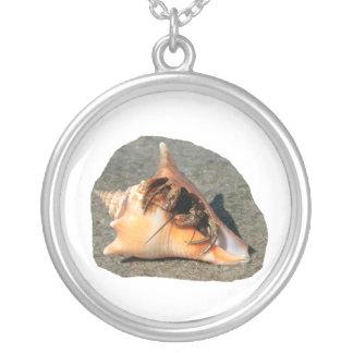 Cangrejo de ermitaño en la arena que sale de la cá joyeria personalizada