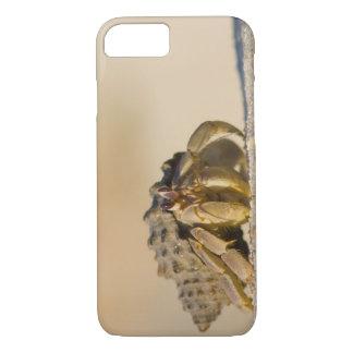 Cangrejo de ermitaño en la playa blanca de la funda iPhone 7