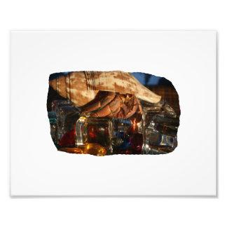 Cangrejo de ermitaño en los cubos de hielo foto