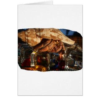 Cangrejo de ermitaño en los cubos de hielo tarjeta pequeña