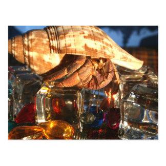 Cangrejo de ermitaño en los cubos de hielo tarjetas postales