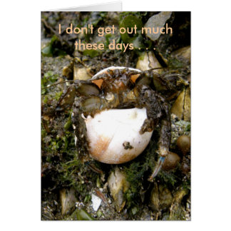 Cangrejo de ermitaño en un Seashell de la luna Tarjeta De Felicitación