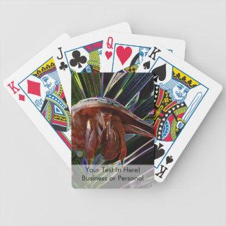 cangrejo de ermitaño fuera de la chispa de la cartas de juego
