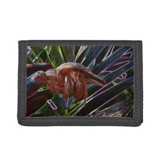 cangrejo de ermitaño fuera de la chispa de la cásc
