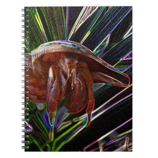 cangrejo de ermitaño fuera de la chispa de la cásc libros de apuntes
