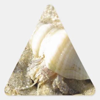 Cangrejo de ermitaño pegatina triangular