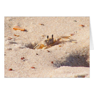 Cangrejo de la arena tarjeta pequeña