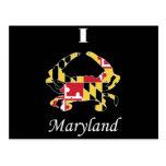 Cangrejo de Maryland del amor Postal