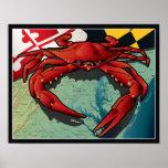 Cangrejo del ciudadano de Maryland Poster