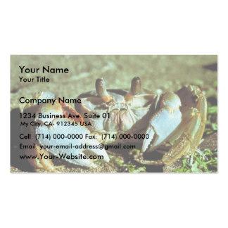 Cangrejo del fantasma plantilla de tarjeta de negocio