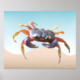 Cangrejo en la playa póster
