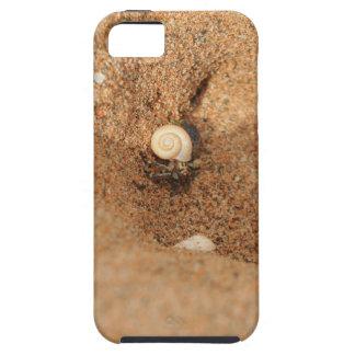 Cangrejo y arenas de ermitaño funda para iPhone SE/5/5s