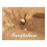 Cangrejo y arenas de ermitaño invitación personalizada