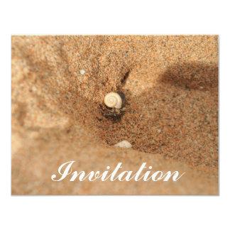"""Cangrejo y arenas de ermitaño invitación 4.25"""" x 5.5"""""""