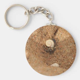 Cangrejo y arenas de ermitaño llavero redondo tipo pin