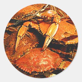 Cangrejos duros cocidos al vapor de Maryland Etiquetas Redondas