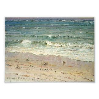 Cangrejos en la playa de D. Howard Hitchcock Impresion Fotografica