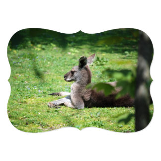 "Canguro australiano invitación 5"" x 7"""
