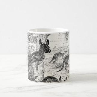 Canguro del australiano de KangaROOS gigante de lo Tazas De Café